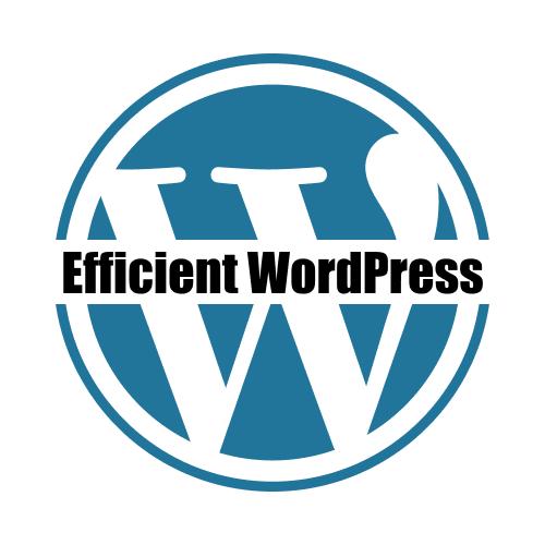Efficent WordPress