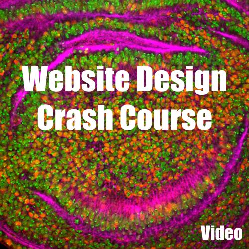 Website Design Crash Course Video Guide