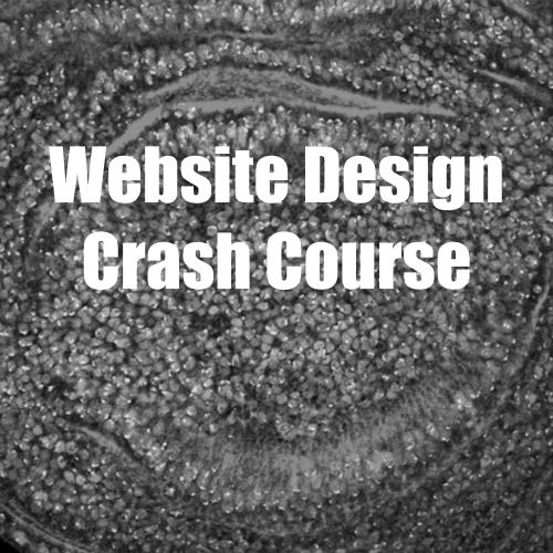 Website Design Crash Course